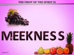 Character Traits of the Spiritual Life: Meekness